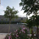 CENTRO COMERCIAL NEVADA 3